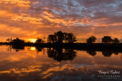 Sunrise reflections on the South Platte River