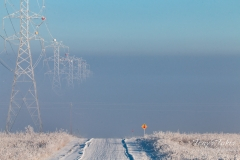 Winter brings disappearing power lines
