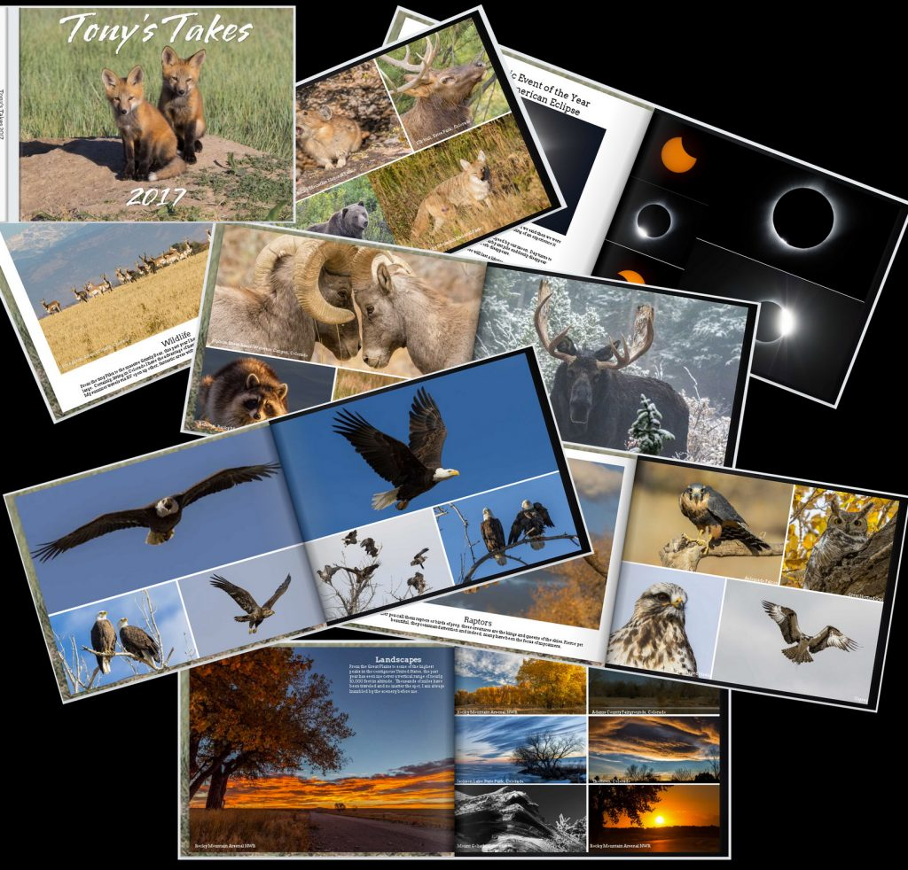 Tony's Takes Photo Book - Landscape, wildlife and more.