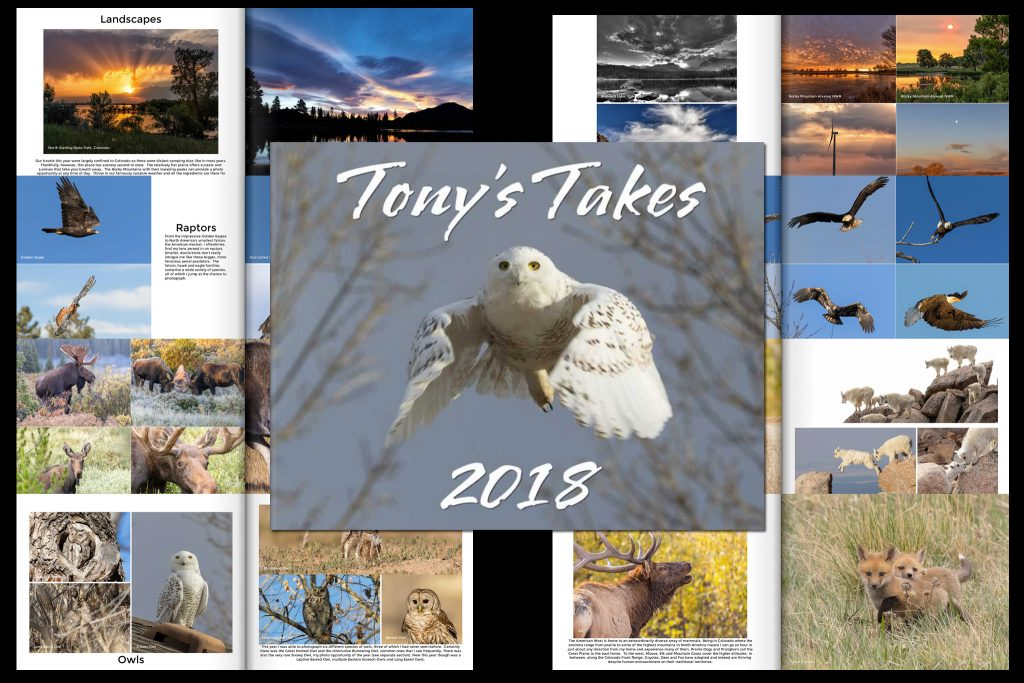 Tony's Takes 2018 photo book